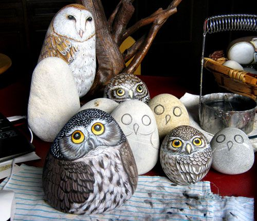 owls on rocks