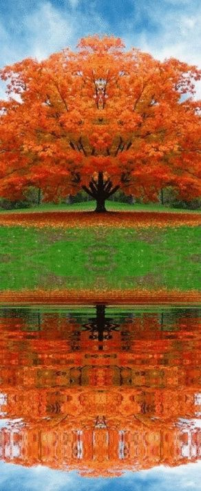 love these fall colors!!.