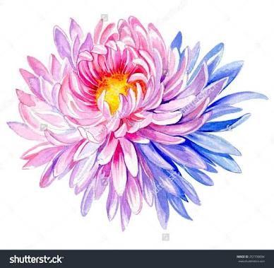 chrysanthemum tattoo - Google Search