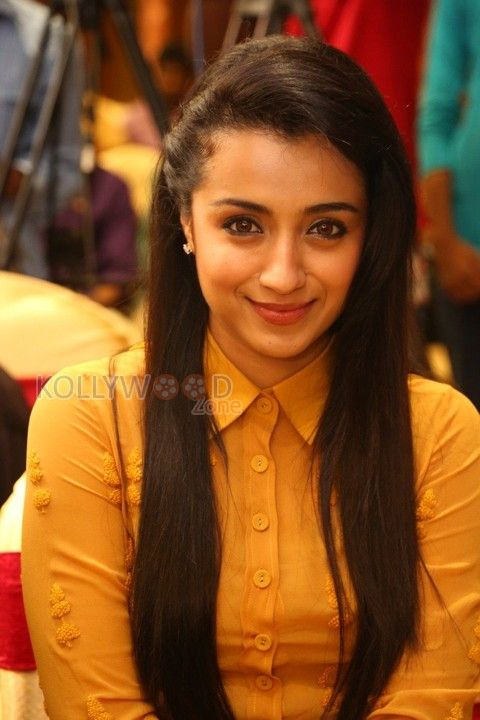 Actress Trisha in Thoonga Vanam Press Meet. More Pictures at http://www.kollywoodzone.com/cat-trisha-280.htm