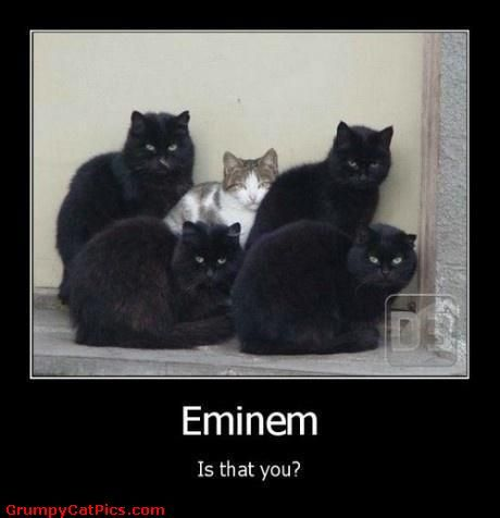 Eminem world turns lyrics