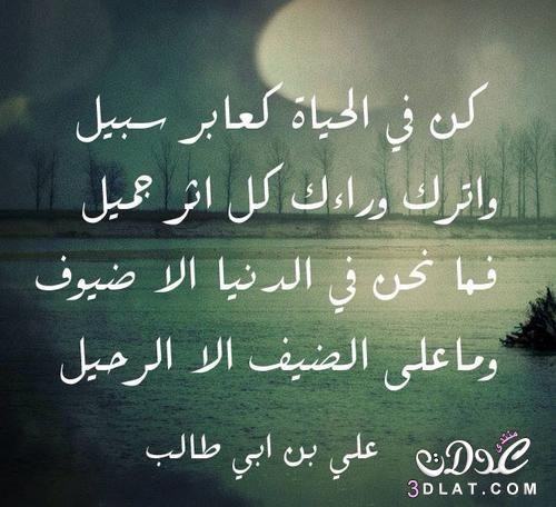 واقوال مصورة للامام طالب اقوال وحكم مصورة 3dlat Net 16 16 F96b Proverbs Quotes Quran Quotes Beautiful Quran Quotes