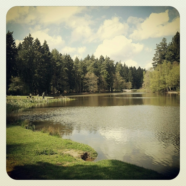 Mallards pike, Forest of Dean, Gloucestershire #perfectpicnic #joules