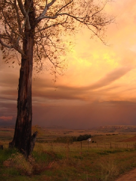 Fouriesburg, South Africa. BelAfrique your personal travel planner - www.BelAfrique.com