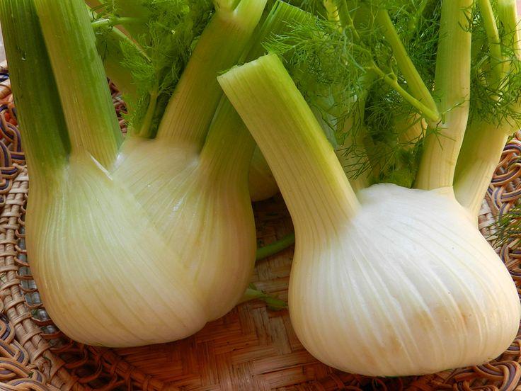 finocchio #ricettedisardegna #recipe #cucinasarda #sardinia