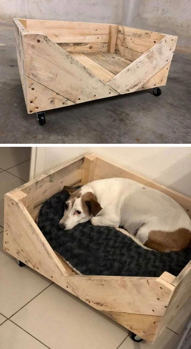 Dogs Hacks Dogs Diy Dogs Room Dogs Pictures Dogs Bed Dogs Collar Dogs Clothes Dogspictures Wood Pallets Pallet Dog Beds Wood Pallet Projects