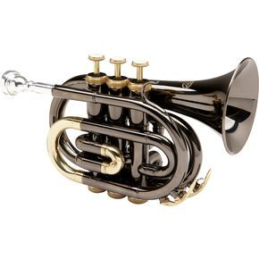 Allora MXPT-5801-BK Black Nickel Series Pocket Trumpet $250  I totally want one!