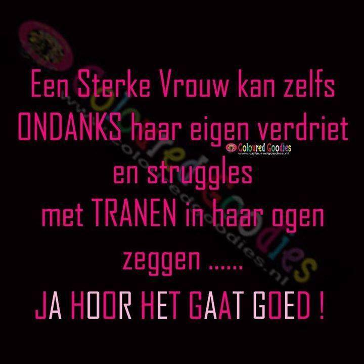 Grappige Citaten : Beste afbeeldingen van teksten nederlands bricks