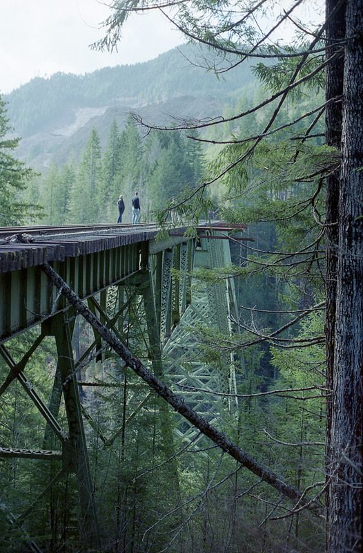vance creek bridge, shelton, washington, pnw | travel destinations in the united states + architecture #adventure