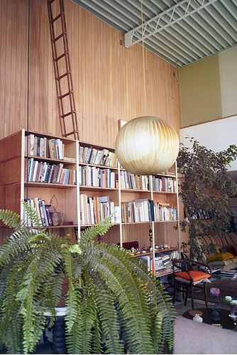 to where does that ladder go, ray? the stars!    the home of charles and ray eames, from architectural daily.
