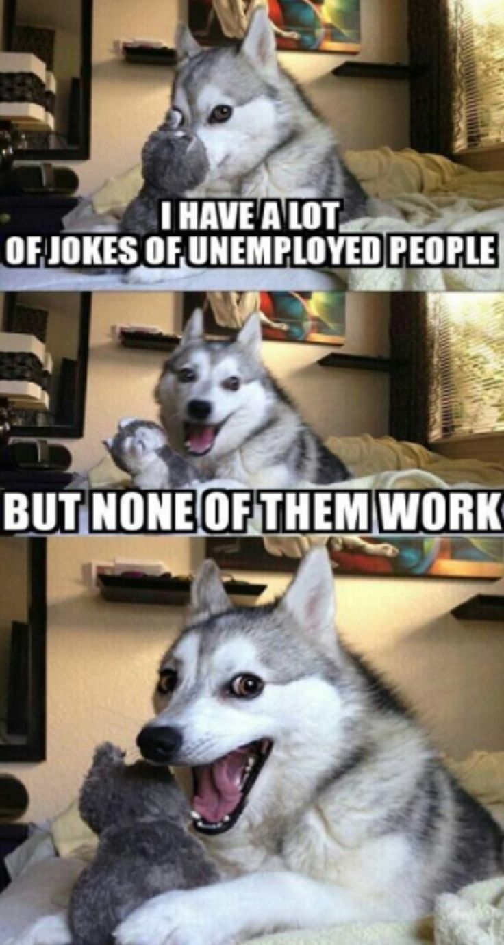 His face at the end of the joke though? LMAO!...| #Funny #Work #Memes