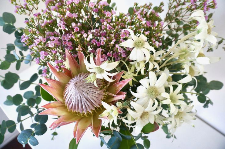The magnificent King Protea signifies courage, diversity & strength 👑