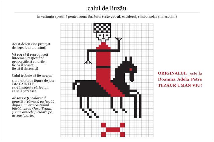Semne Cusute: MOTIVE: calul de Buzau