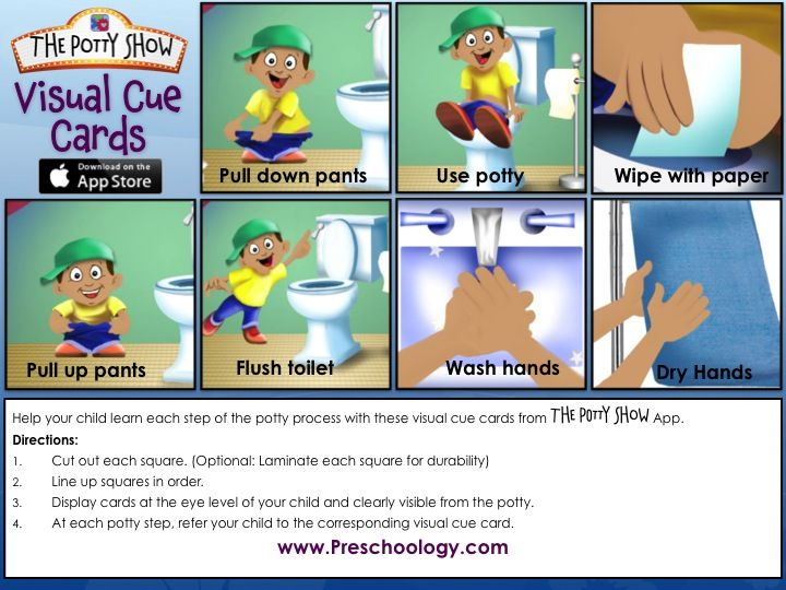 Potty Show Visual Cue Cards (Boy) Use the attached FREE downloadable PDF files to help your child learn each step of the potty process with these potty training visual cue cards from The Potty Show App. Directions: 1. Cut out each square. (Optional: Laminate each square for durability) 2. Line up squares in order. 3. Display cards at the eye level of your child and clearly visible from the potty. 4. At each potty step, refer your child to the corresponding visual cue card.