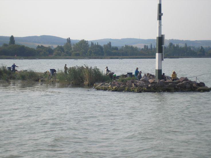 Fishing on the lake Balaton in Hungary