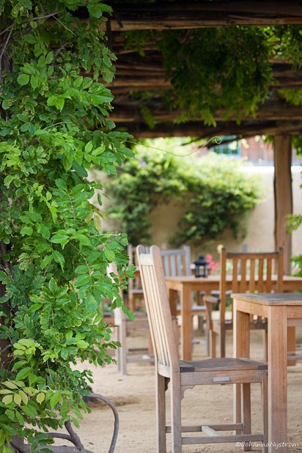 Winery in sunny California