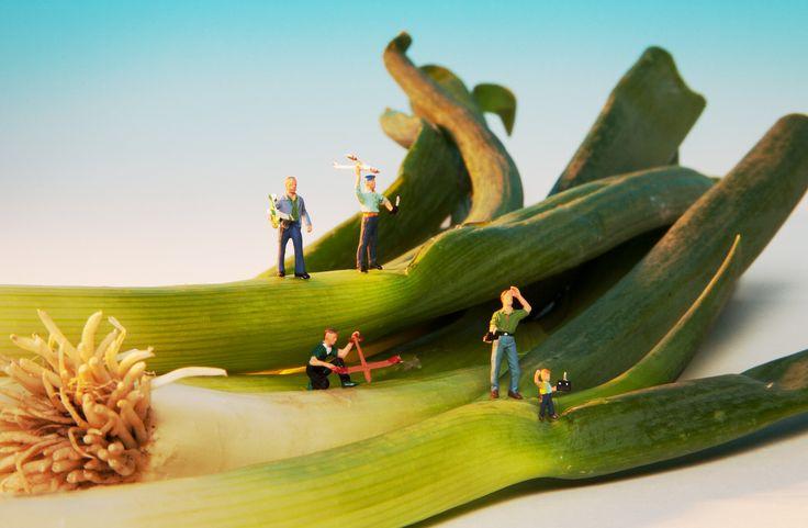 Diese Hobby-Modellflieger sind selber Modellfiguren, die ihre Flieger vom Frühlings-Lauch aus starten lassen. Mit ihren Fernsteuerungen lassen die kleinen Leute ihre noch kleineren Modelle fliegen. Die Figuren kann man bei NOCH kreativ online kaufen. www.noch-kreativ.de