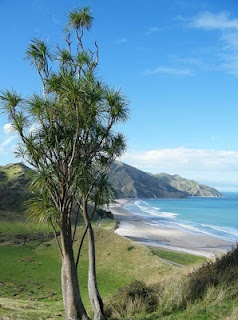 Kaiaua Beach on the East Coast of the North Island New Zealand.