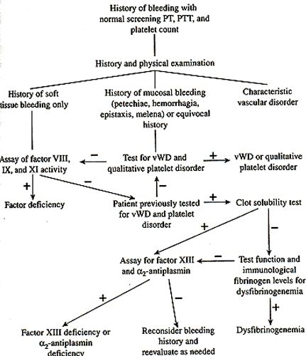 medical chart example