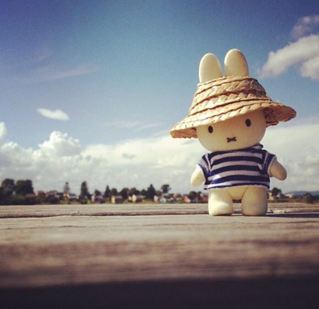 Miffy out and about.