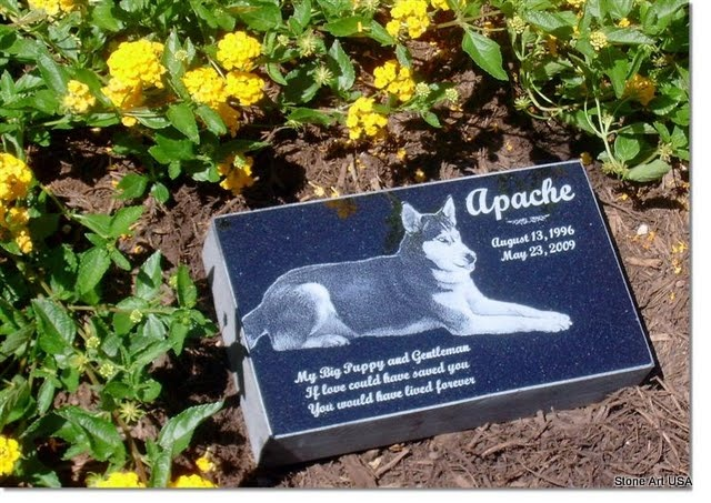 pet burial in backyard - 28 images - how to make a pet ...