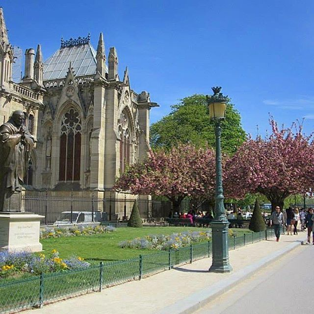 🇫🇷 April in Paris 🌺 SPRING 🌸  #paris #visitparis #instaparis #instafrance #spring #april #throwback #visitfrance #afternoonstroll #beautiful #picturesque #superb #magnifique #spectacular #instagood #instatravel #instaholiday #instamoment #vacation #travel #explore #live #love #melbournelifelovetravel #loveit #thatview #takemeback  #scenery #cherryblossoms #notredame
