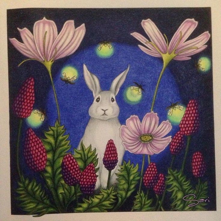 """7 tykkäystä, 1 kommenttia - Sari Hankaniemi (@sari_kani_) Instagramissa: """"#coloring#adultcoloringbook#bunny#sarihankaniemi#kaunisluontovärityskirja…"""""""