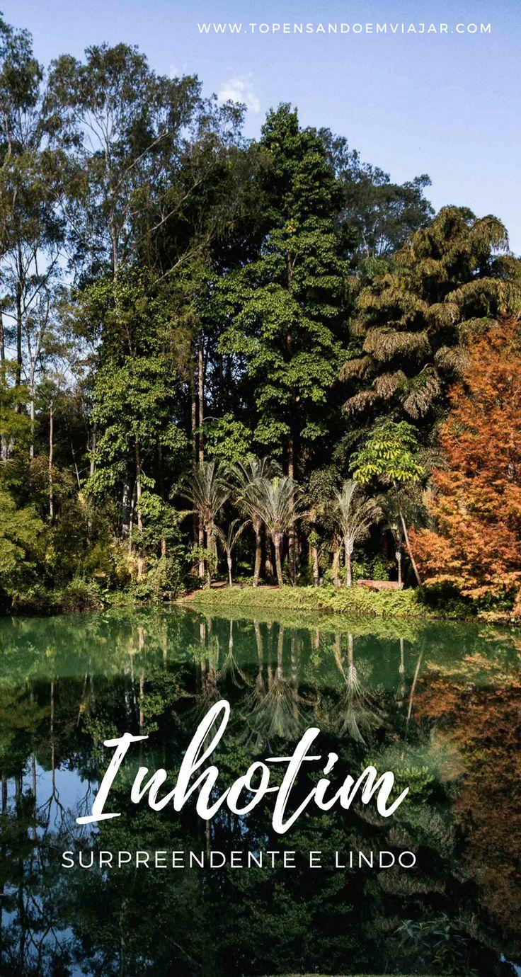 Vamos descobrir juntos um dos lugares mais incríveis do Brasil?!  Confira todas as dicas pra você explorar o Inhotim na prática. Com muita arte, natureza, e inspiração!