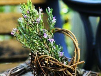 Proprietăţile MIRACULOASE ale rozmarinului. Iată ce afecţiuni poate vindeca! | Articole | Click sanatate