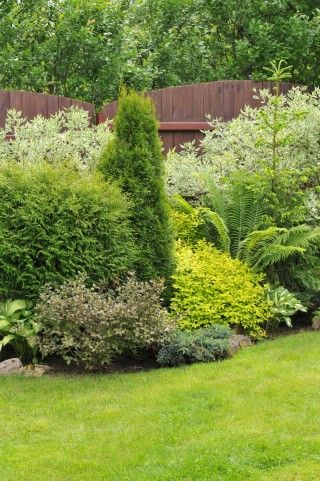 65 best Berm and Mound Landscaping images on Pinterest