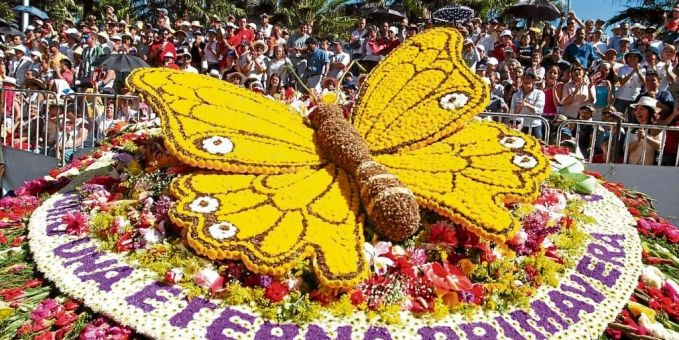 Feria de flores this is  SILLETA  made  COMPLETELY NATURAL FLOWERS, WONDERFUL
