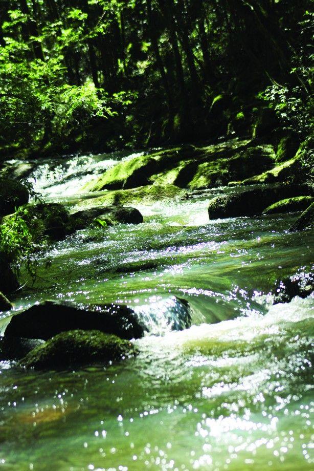 Itaara (RS) Em 1º de julho, a Secretaria de Estado de Ambiente e Desenvolvimento Sustentável reconheceu a Reserva Particular de Patrimônio Natural (RPPN) Estadual MO'Ã, de propriedade da Fundação MO'Ã. O ato foi publicado no Diário Oficial do Rio Grande do Sul.