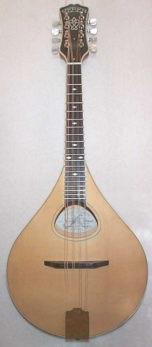 Celtic 8 String Instrument ~ Unique Shape with Natural Finish