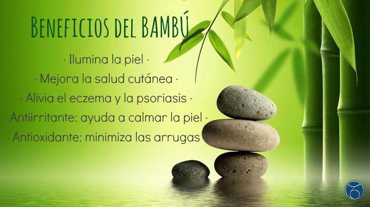 ¿Todavía no conoces los beneficios del bambú? Es un producto totalmente natural que te cuida por dentro y por fuera. Puedes conseguirlo en cremas, mascarillas y cosmeticos. Para conseguir el tuyo, contacta con nosotros: http://www.mtmeler.com #belleza   #indiba   #radiofrecuenciafacial   #salud   #bambu   #naturalbeauty