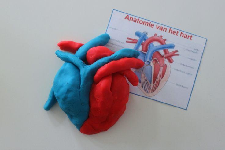 wat te doen bij een hartinfarct