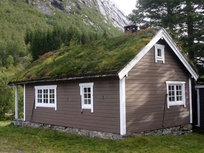 озелениение на крыше в загородный доме в скандинавском стиле