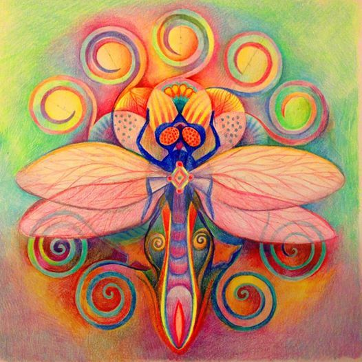 The Drogonfly Shamanic Mandala Wall Hanging Floral