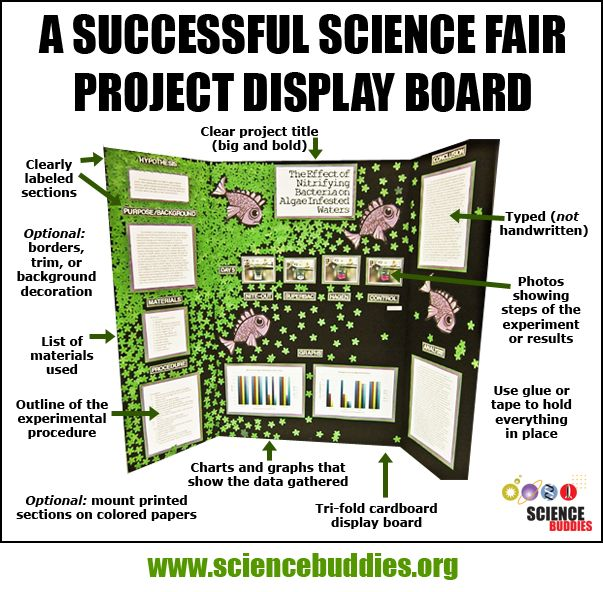 """Mastering the Project Display Board"": Review project display board basics with students to help them create effective display boards that showcase their awesome hands-on #STEM projects. [Source: Science Buddies, http://www.sciencebuddies.org/blog/2016/02/mastering-the-project-display-board.php?from=Pinterest] #sciencefair #scienceproject"