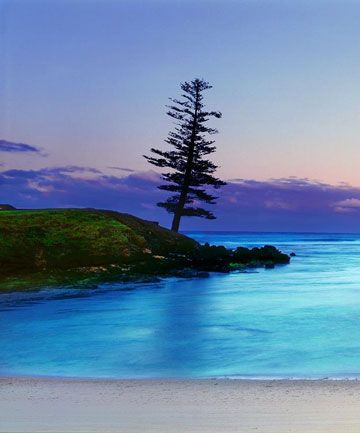 Norfolk Island - did the double trip with Lord Howe. Beautiful part of Australia.