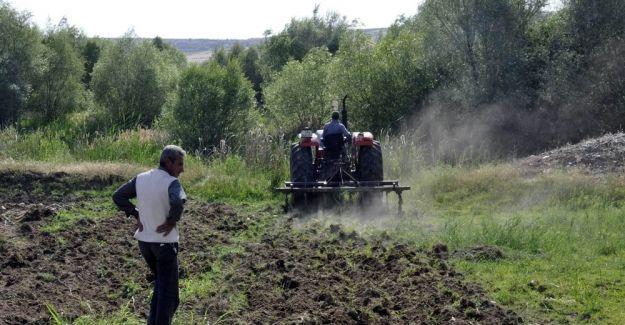 Diyarbakır karpuzu artık festivaller için üretiliyor