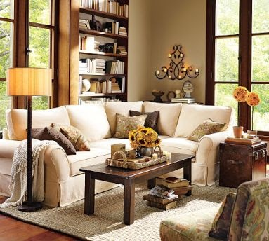 Earth Tones Living Room