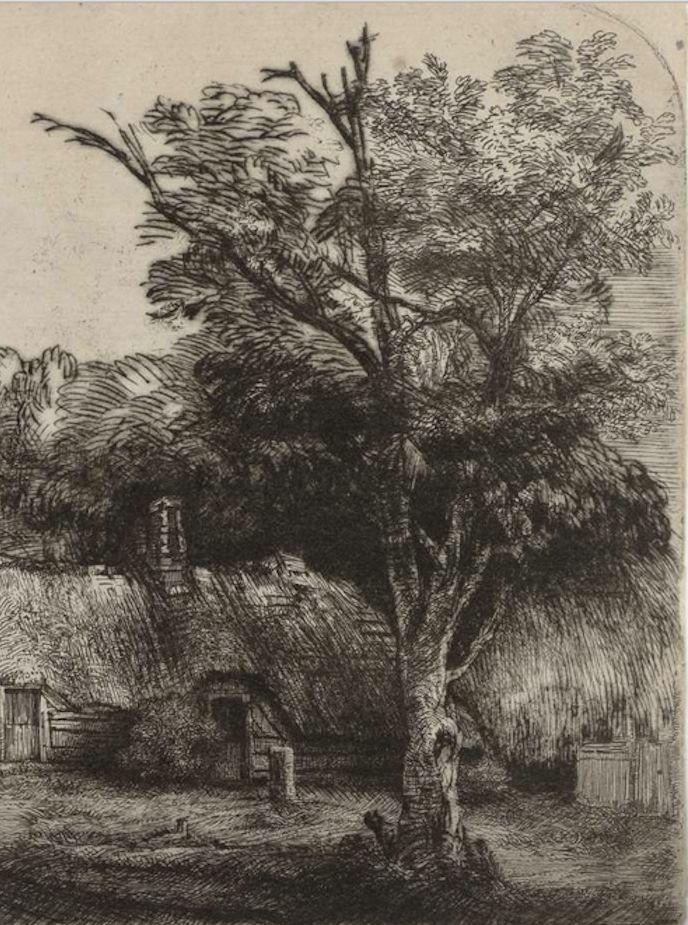 Rembrandt, detail 1650 etching