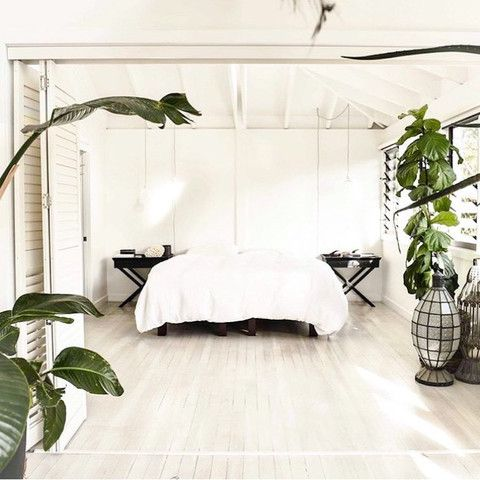 Green plants in the bedroom   The best of the best - Jamie Blakey is not just good at hole ripping.