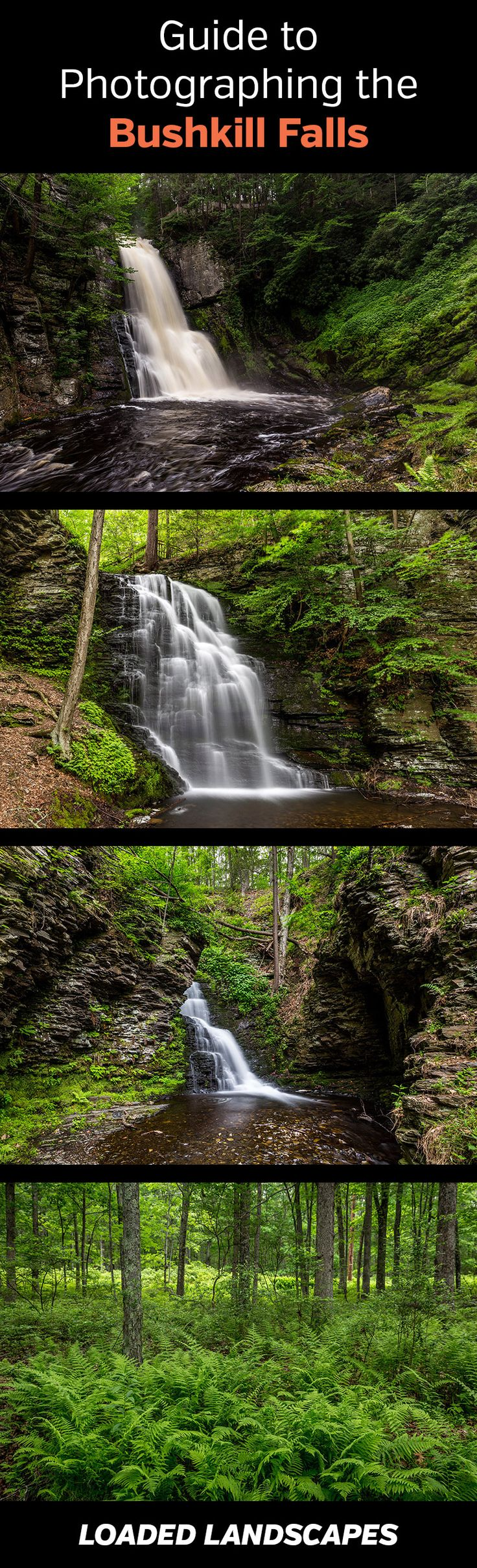 Guide to Photographing Bushkill Falls (Pennsylvania)