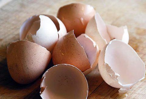 Načo všetko sa dajú použiť škrupiny z vajec?