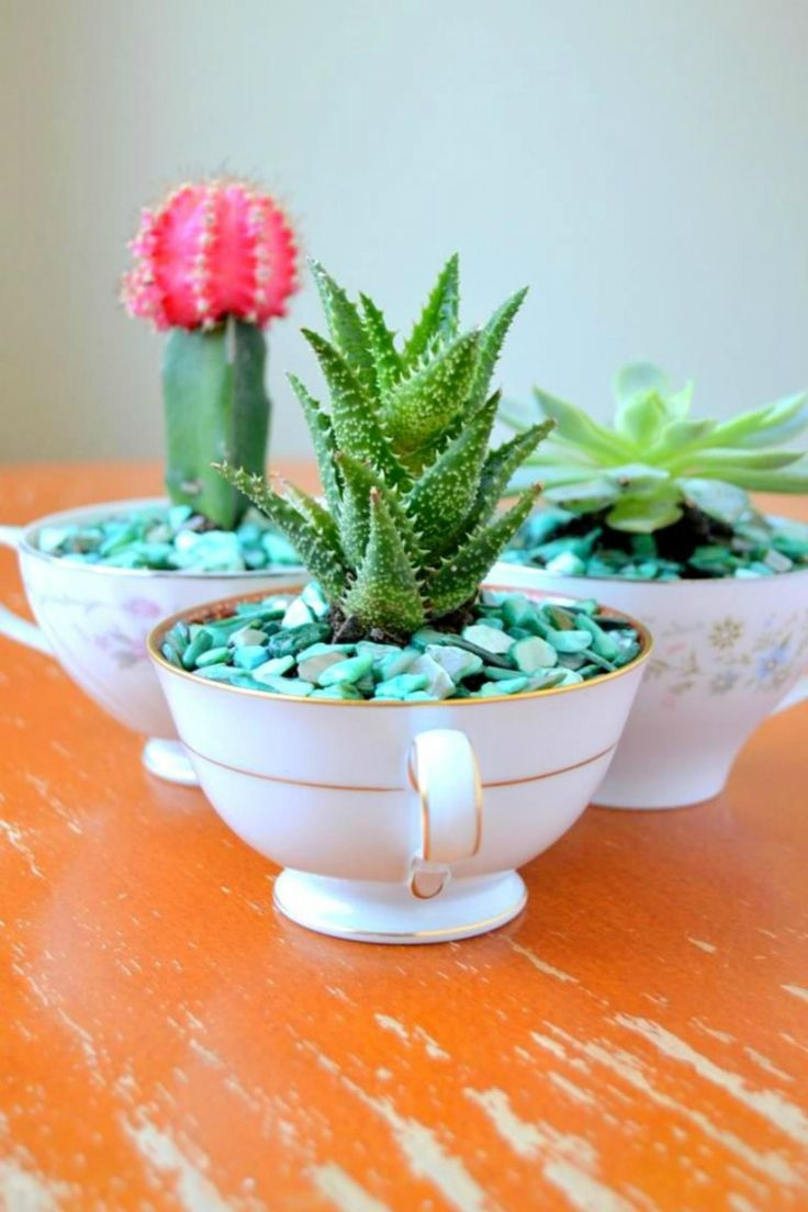 Revamp vintage teacups with this easy maintenance DIY idea crazy for cacti. All you need are small pebbles, cactus soil and decorative aquarium rocks to complete the earthy vibe.