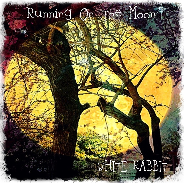 "WHITE RABBIT's ""Running On The Moon"" is a complete departure from their 1st album ""Late To the Tea Party"". The sounds here are lusher, mellower, more melodious, the lyrics of a gentler nature...albeit a little crazier than the previous album, if that is possible!"