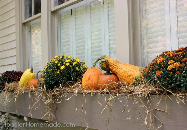 Outdoor Decorating For Fall Window Boxes Fall And Fall