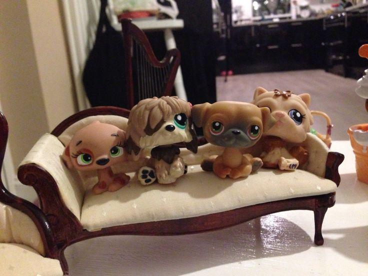 Littlest Pet Shop... Cuteness
