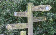ASHFIELD CARAVAN SITE :: Touring Caravan Site, Lockton, Pickering, North Yorkshire